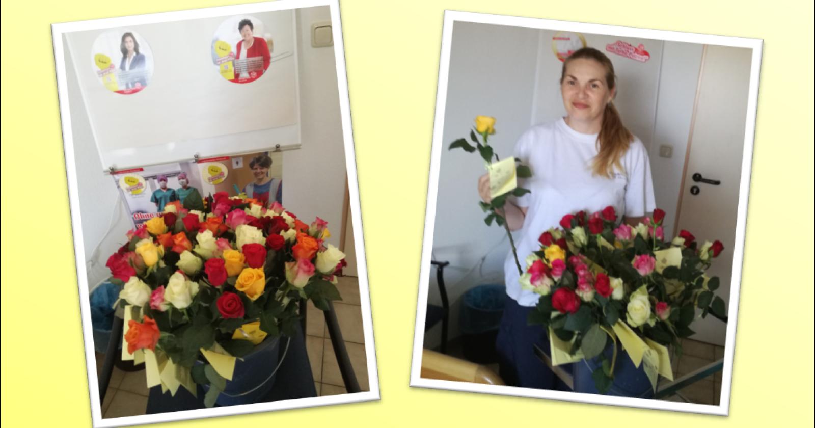 Rosen in der Missionsärztlichen Klinik - Der Tag der Gebäudereinigung in Würzburg